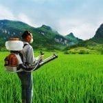 Curso Segurança nos Trabalhos na Agricultura