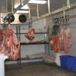 Treinamento Ambientes Frios - Exposição e Trabalho em Câmara Fria