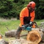 O objetivo do Curso Operador de Motosserra NR 31 e NR 12 é preparar os colaboradores para estarem aptos a manusear e operar corretamente a Motosserra visando a eficiência no corte de árvores e tocos no chão e principalmente a segurança de todos envolvidos conforme preconiza NR 31.