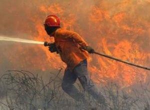 Treinamento Brigada de Incêndio e Primeiros Socorros
