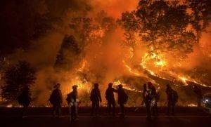 Treinamento Brigada de Incêndio Florestal