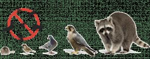 3201 - Programa de Controle de Animais Sinantrópicos – NR-32