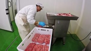 Curso Moedor de Carne