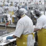 3604 - Treinamento do Programa de Conservação Auditiva – Trabalhadores Expostos a Níveis de Pressão Sonora Acima dos Níveis de Ação na Indústria de Abate e Processamento de Carnes e Derivados