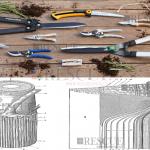 Curso Anatomia das Árvores e Qualidade na Poda