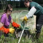 Treinamento Manuseio do Kit de Resgate de Fauna