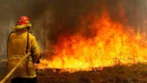 Curso Brigada de Incêndio Florestal