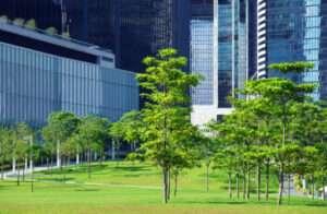Curso Arborização