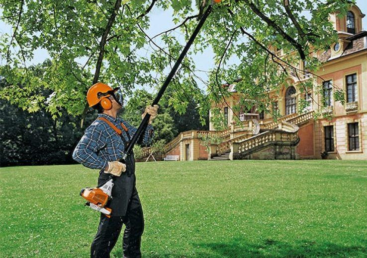 Treinamento Poda e/ou Abate de Árvores NR 31 e NR 12